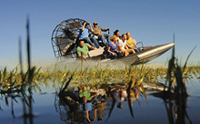 Everglades Airboat Tour and Biscayne Bay Sightseeing Cruise (VIA PROMO)